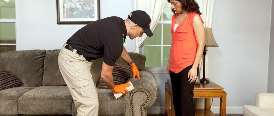 Fort Oglethorpe, GA carpet upholstery cleaning
